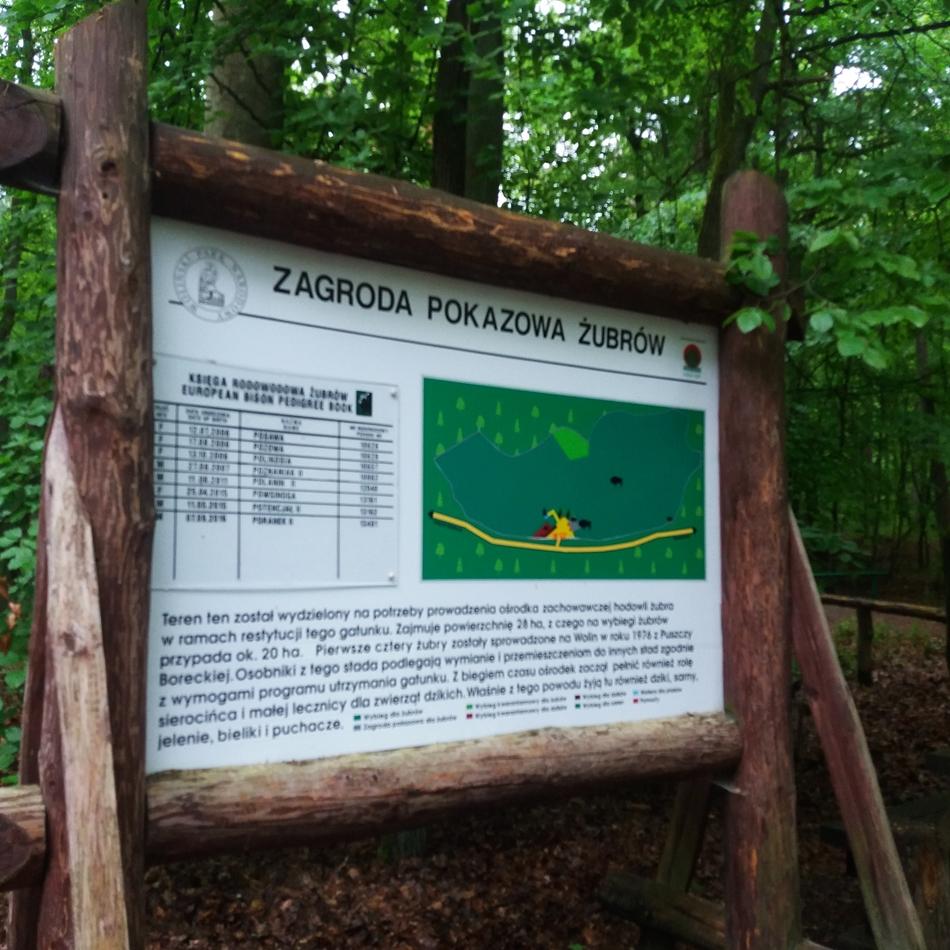 Międzyzdroje poza sezonem- odczarowujemy polskie plaże (31)