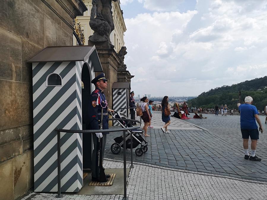 Warta przed zamkiem w Pradze