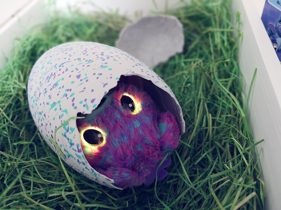 Zabawa Hatchimals