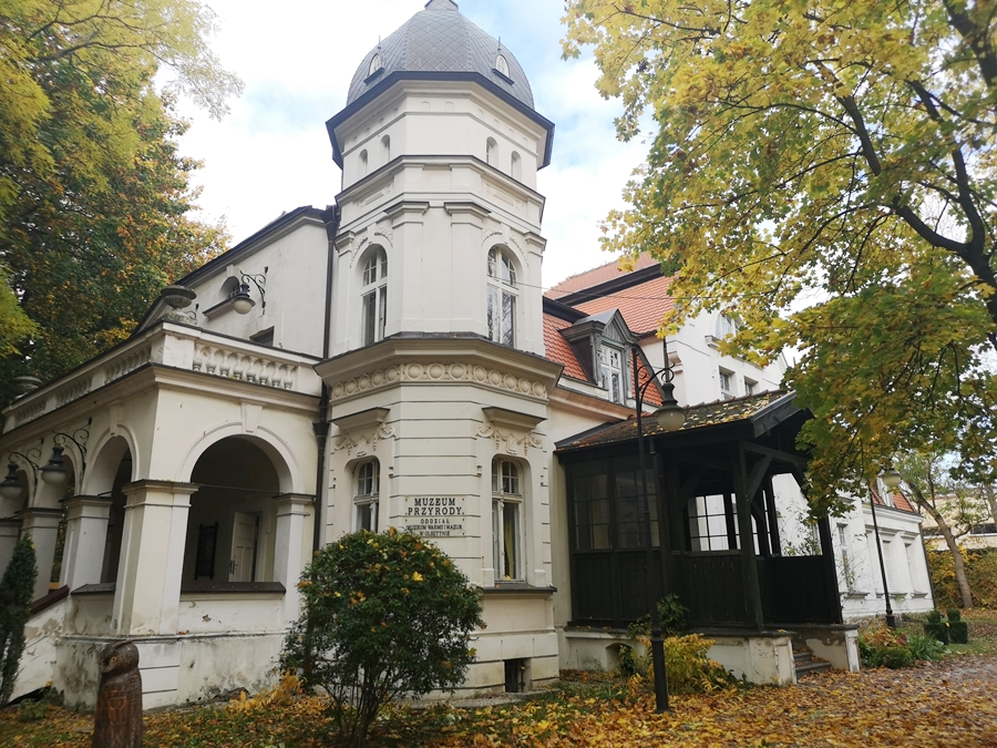 Muzeum Przyrodnicze w Olsztynie i nasz rodzinny quest