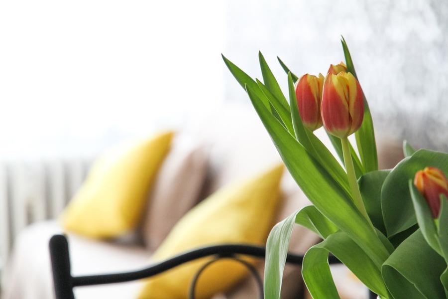 Kwiaty w wazonie, subtelna dekoracja do każdego wnętrza