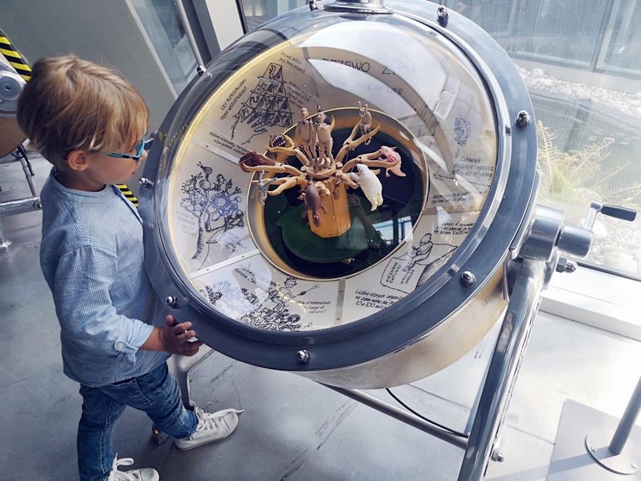 Centrum Nauki Kopernik atrakcje dla dzieci