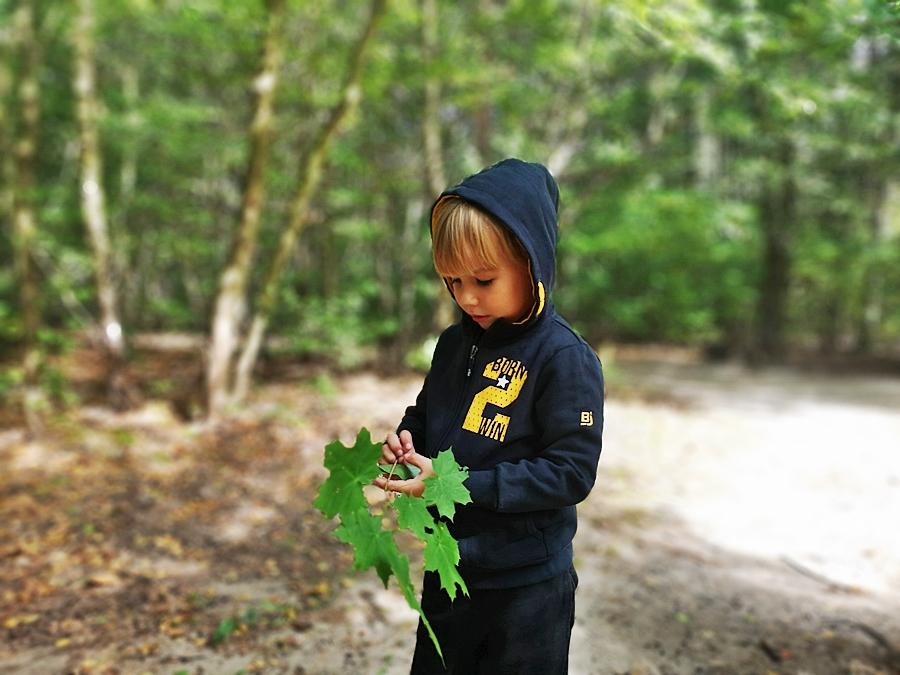 Jak wychować małego przyrodnika